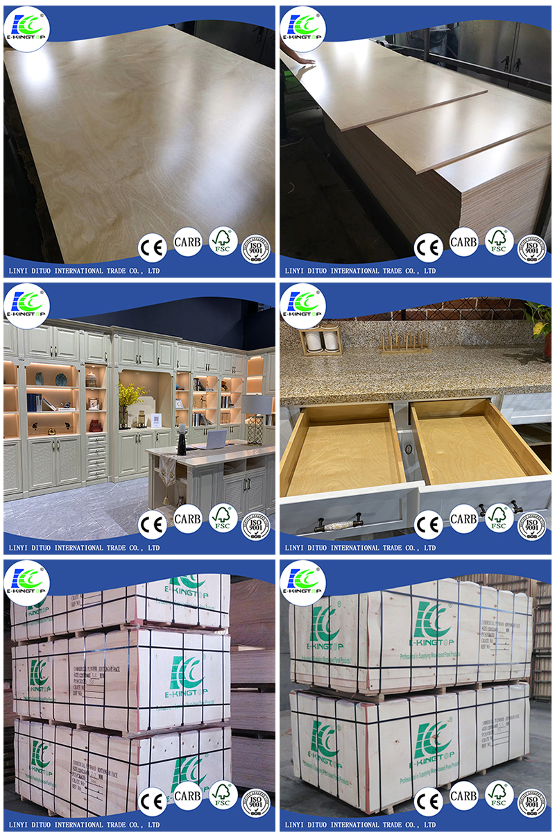 Birch Plywood(图1)